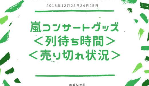 【2018東京公演2回目】嵐グッズ列5×20プレ販売・待ち時間・売り切れ状況
