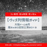 嵐 5x20 追加公演 第2弾 京セラドーム大阪 グッズ列 グッズプレ販売日