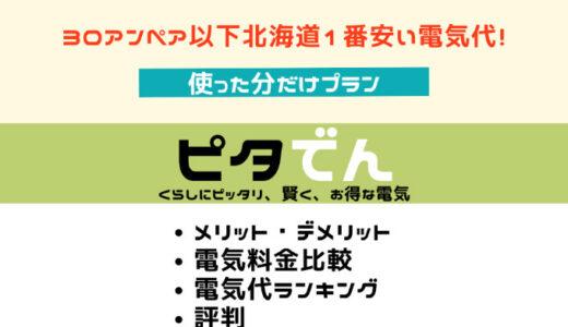 ピタでん 使った分だけプラン|北海道エリア評判・キャンペーン・デメリット・解約違約金情報