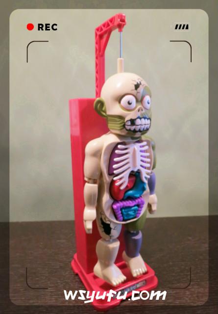 放課後の怪談シリーズ 恐怖!ドキドキクラッシュ人体模型 限定ホラーカラーバージョン