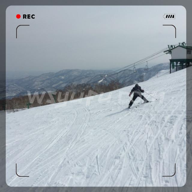 スキースクール札幌子供効果