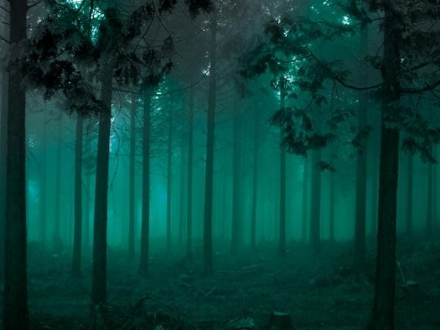 山林に置き去りになった7歳小2男子の安否が気になって仕方ない
