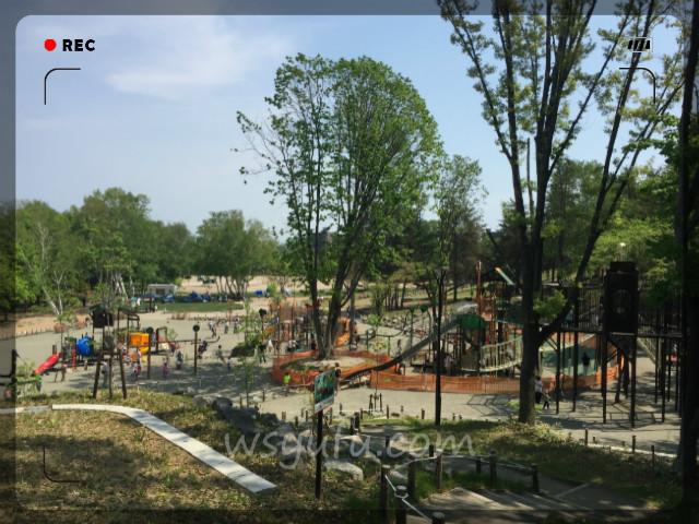 月寒公園「森の遊び場」人気遊具第3位:コンビネーションアスレチック遊具