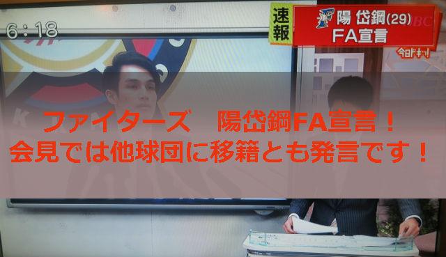 日本ハム陽岱鋼FA宣言