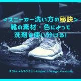 スニーカー洗い方秘訣 靴洗い 洗濯洗剤