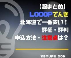 新電力会社Looopでんき メリット・デメリット 電力自由化まとめ