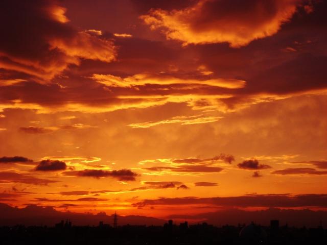 子供が夜寝る光はオレンジ色照明