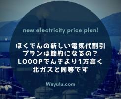 ほくでんの新しい電気料金割引プラン 電気代節約
