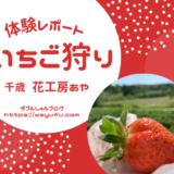 北海道千歳 花工房あや いちご狩り体験談ブログ!土日混雑で8時30分到着でギリギリ